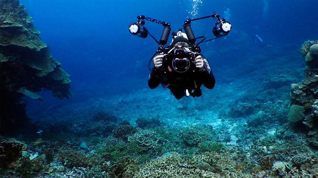 Подводная фотосъёмка бесплатно