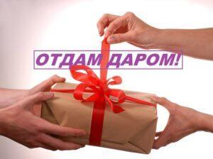 товары даром бесплатно